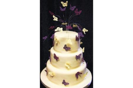 butterfly-cake-96-1 mod